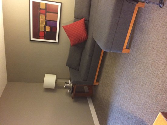 Hilton Toronto Airport & Suites: Living Room