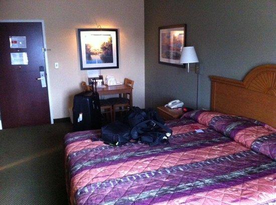 Econo Lodge Valdosta: King bed room on 3rd floor