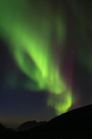 ‪‪Marianne's Heaven on Earth Aurora Chaser Tours‬: My first Aurora‬