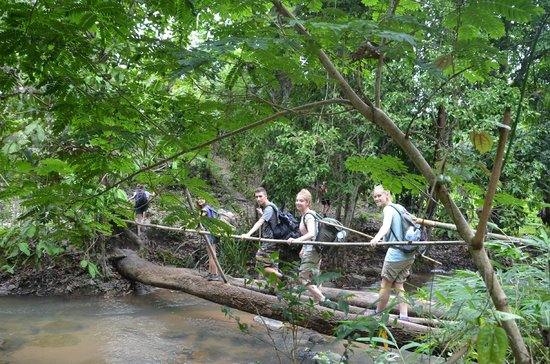 Jungala Nature Treks - Day Tours