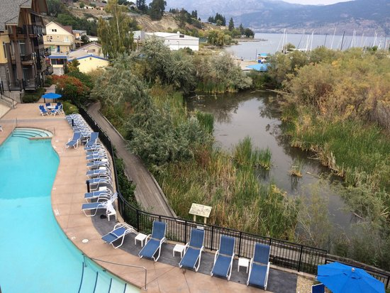 Summerland Waterfront Resort & Spa: The pool from our room
