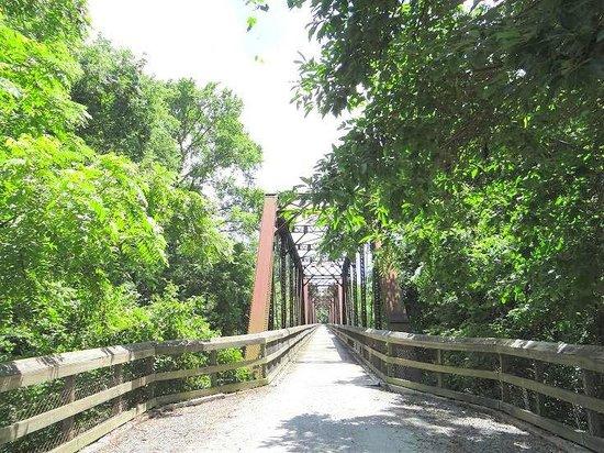 Randolph, Βιρτζίνια: the bridge