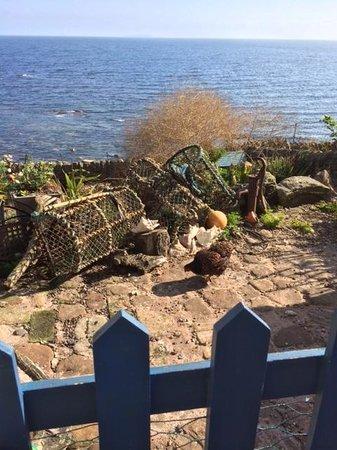 Crail Harbour Gallery: Blick auf Huhn und Meer
