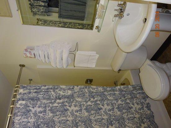 Colony Motel: Bathroom