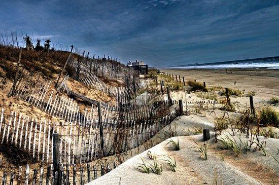 Pebble Beach Condominiums: Sand fences and dunes