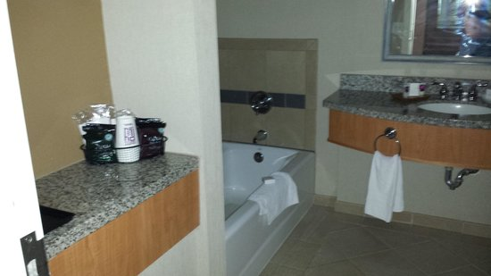 Harrah's Ak-Chin Casino Resort: bath room1