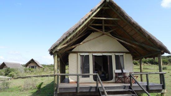Gorah Elephant Camp: Tent 10