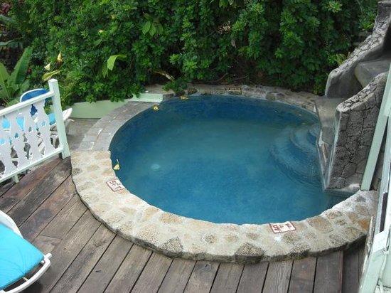 Fond Doux Plantation & Resort: A small Swimming Pool