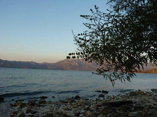 Hotel Silva Oliva: Bafa Lake