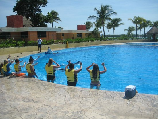 Dolphinaris Barcelo: Preparation  ---- LOTS OF IT