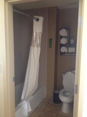 Hampton Inn & Suites New Braunfels: Room - bathroom