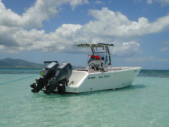 Baie-Mahault, Guadeloupe: Le bateau Max Mallo