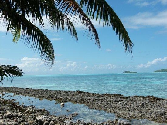 Escapade Charter Tahiti, Day tours : Motu de Tetiaroa