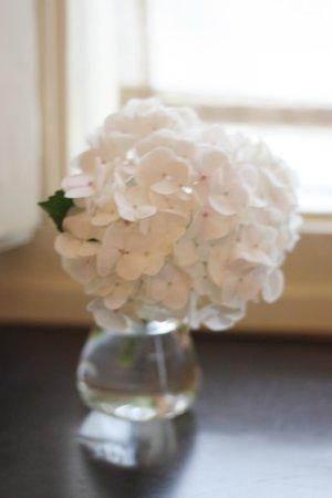 Posada Villa Esperanza: Flores frescas