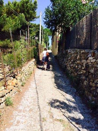 Ethnohotel B&B Villa Rosa dei Venti: the narrow path