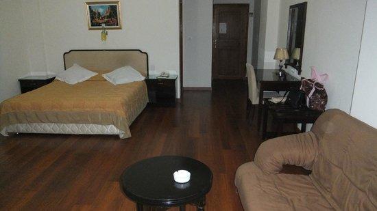 Hotel Le Majestic : Chambre