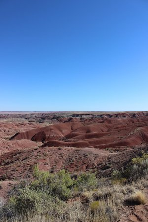 Painted Desert : Red