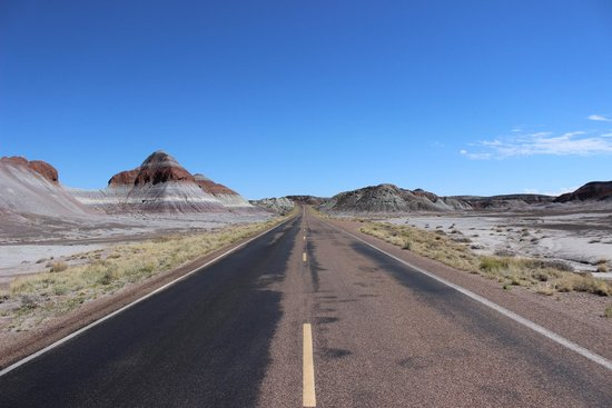 Painted Desert : Driving - Petrified Forest