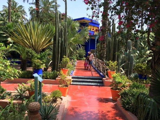 Domaine Rosaroum: visite jardins majorelle