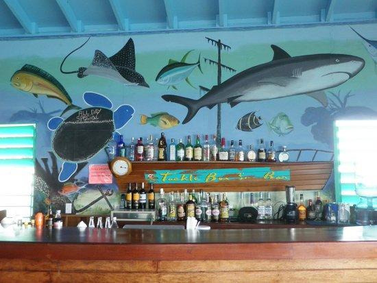 Tranquility Bay Resort: Bar