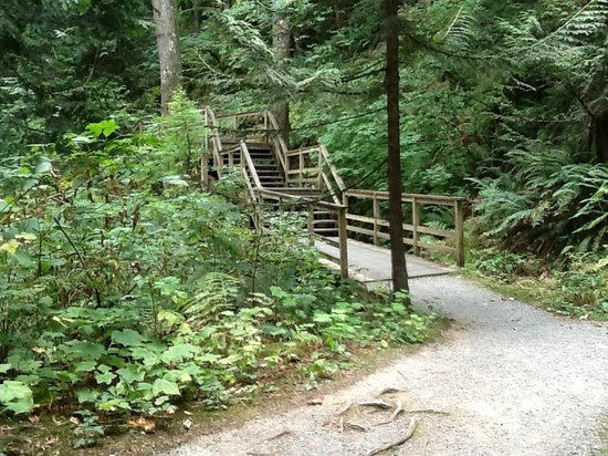 how to get to harrison hot springs by bus