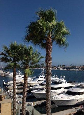 Balboa Bay Resort: view of the bay.  beautiful