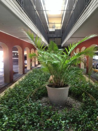 Super 8 - New Orleans : The car park beneath the hotel rooms