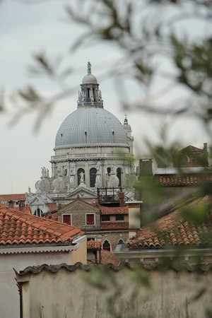 Hotel Saturnia & International: View from the rooftop patio