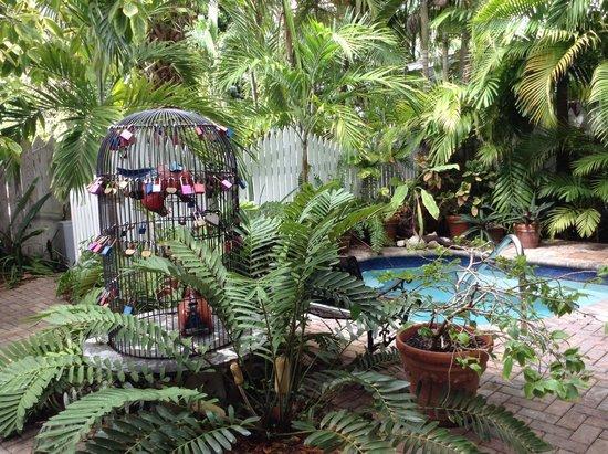 "Tropical Inn : ""Love Locks"" in the garden"