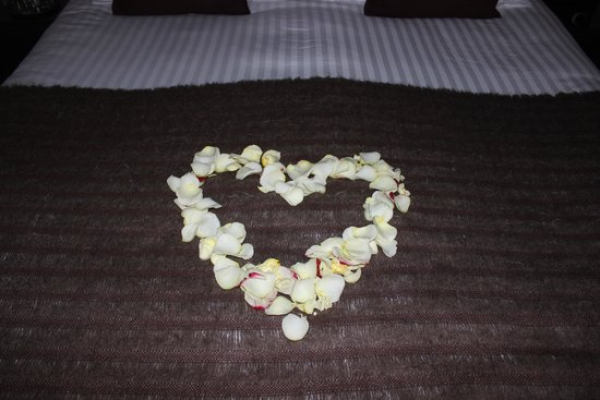 Huis Koning: Rose Pedals for Anniversary