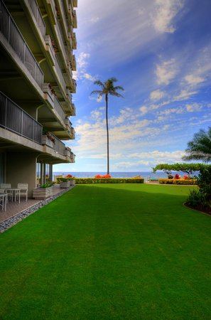 Aston at The Whaler on Kaanapali Beach: Grounds off of our Lanai