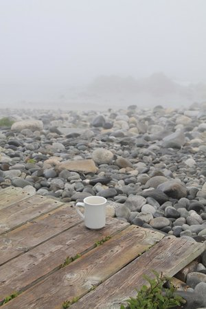 White Point Beach Resort: Out for an early morning stroll, very foggy, but still beautiful!