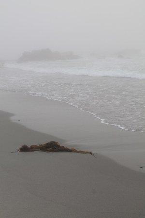 White Point Beach Resort: The beautifully sandy beach.