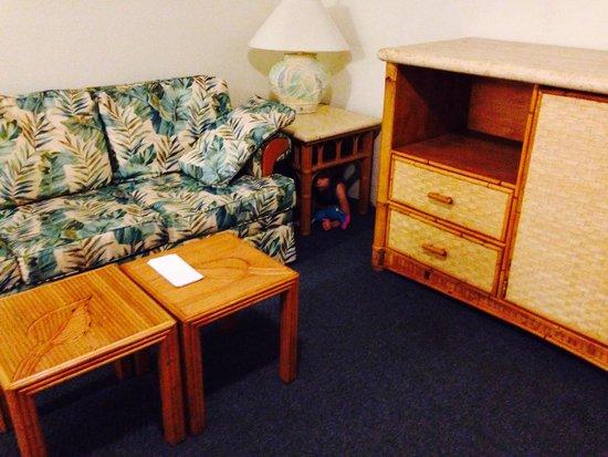Halemalu : Living room area