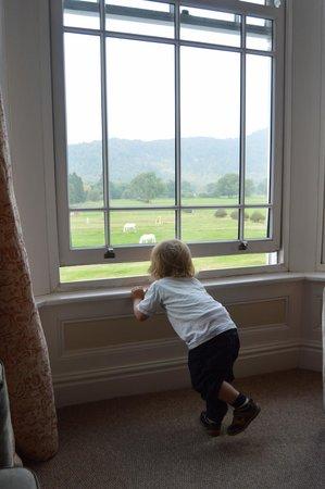 The Meadowsweet Hotel: Joshua enjoying the view!