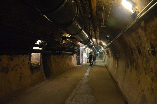 Musee des Egouts de Paris: Tunel