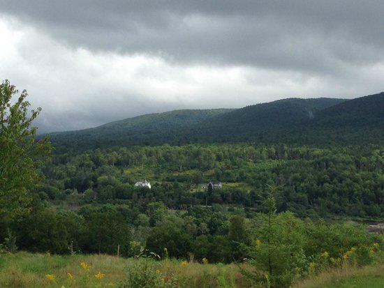 Chanterelle Inn & Cottages: View from the Inn