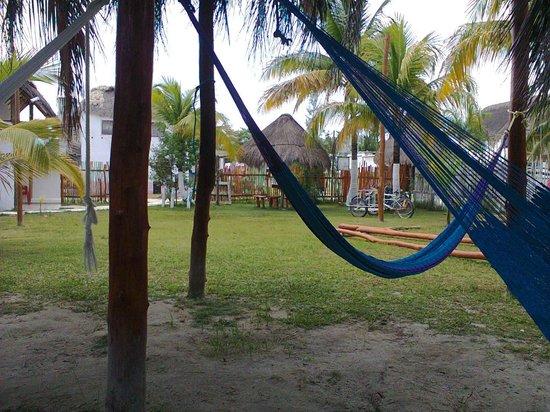Golden Paradise Camping Area: Zona de hamacas