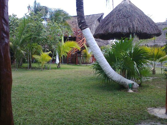 Golden Paradise Camping Area: Vista del jardín