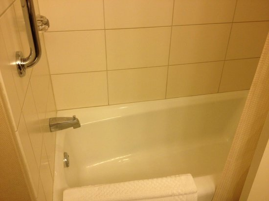 Detroit Marriott Livonia: Bathtub