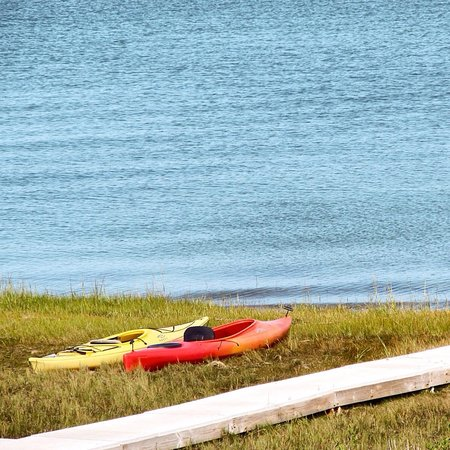 Long Pasture Wildlife Sanctuary : Our kayaks