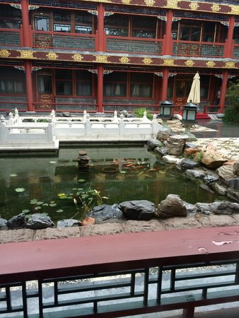 Han's Royal Garden Hotel : This is the charming koi pond outside our room.