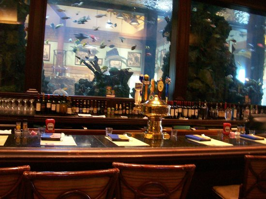 islamorada fish company bar area u0026 wall fish tank