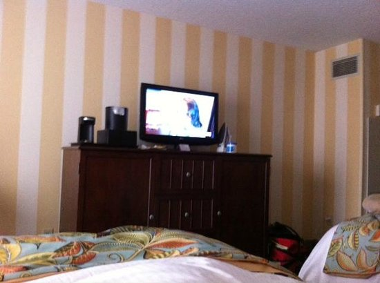 Charleston Marriott : Room 811 TV view