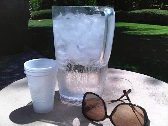 The Westin Kierland Resort & Spa: Fresh Cold Jugs of Water