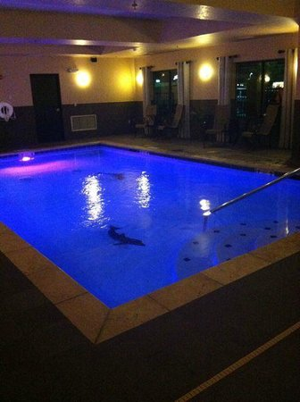 Best Western Plus Tupelo Inn & Suites: Pool