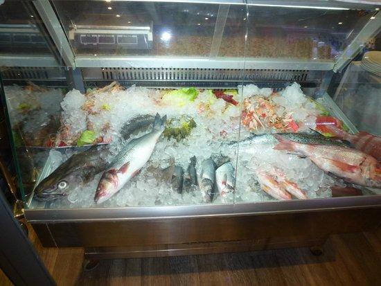 La Reserva del Olivo: Great Fish Display