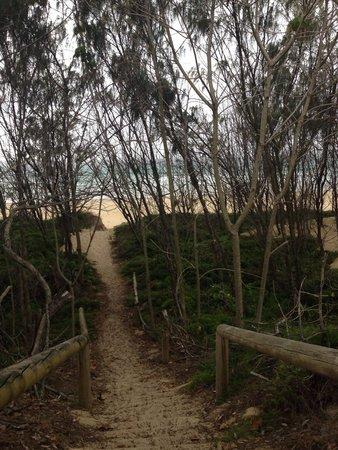 The Retreat Beach Houses Peregian Beach: Beach track
