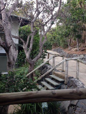 The Retreat Beach Houses Peregian Beach: To beach house