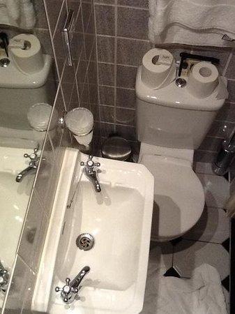 9 Green Lane: toilet under sink